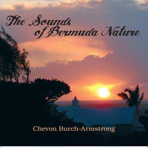 Sounds of Bermuda Nature