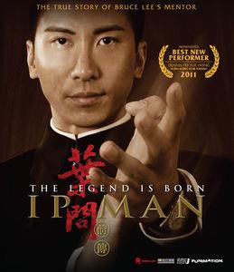 Legend Is Born: Ip Man