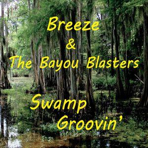 Swamp Groovin