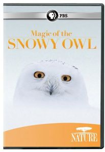 Nature: Magic of the Snowy Owl