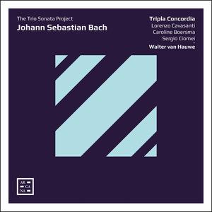 Trio Sonata Project