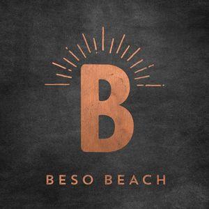 Beso Beach 2017: Mixed By Jordi Ruz /  Various [Import]