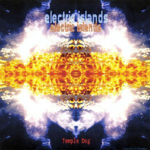 Electric Islands