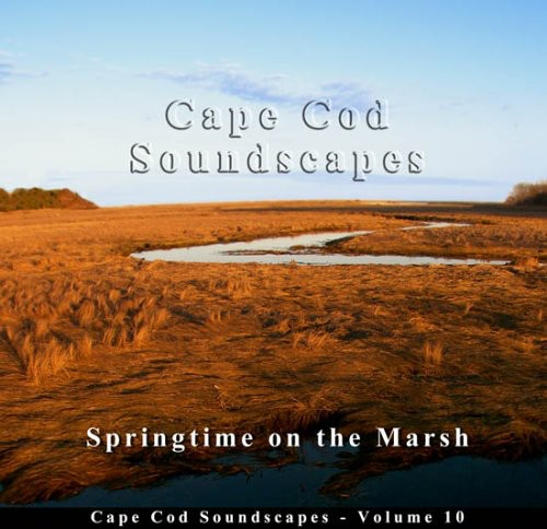 Cape Cod Soundscapes 10: Song Birds on Marsh