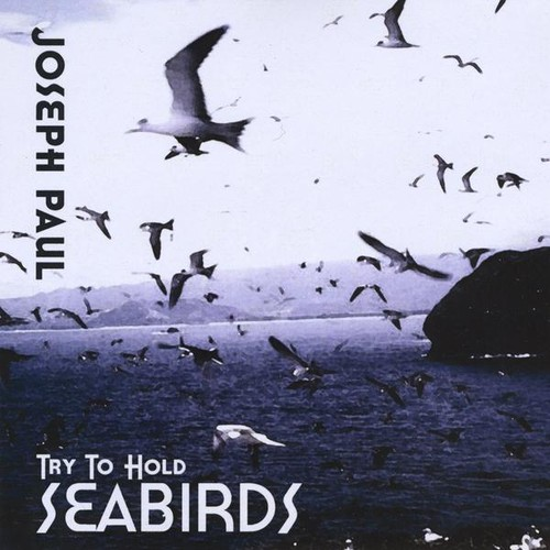 Try to Hold Seabirds