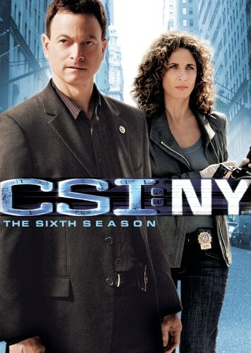 CSI: NY: The Sixth Season