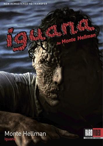 - Iguana