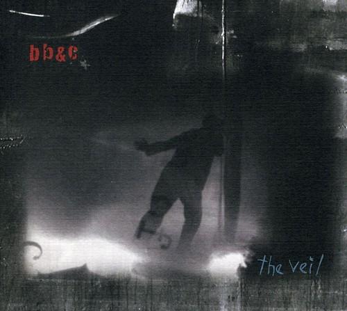 Nels Cline & Jim Black - The Veil