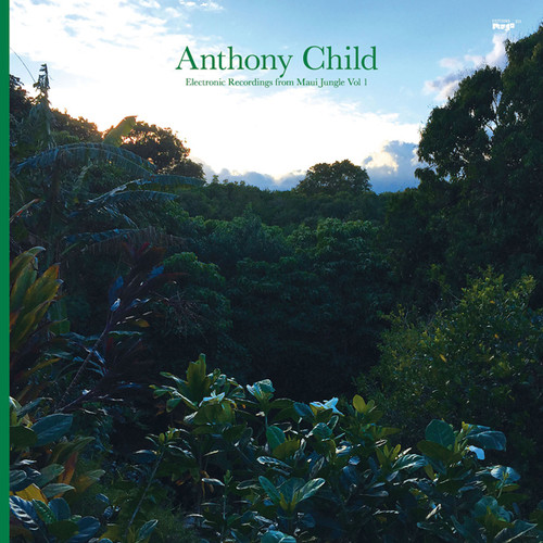 Electronic Recordings from Maui Jungle Vol. 1