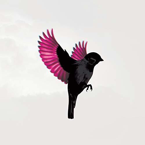 Jump Little Children - Sparrow