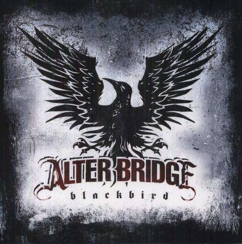 Blackbird [Import]