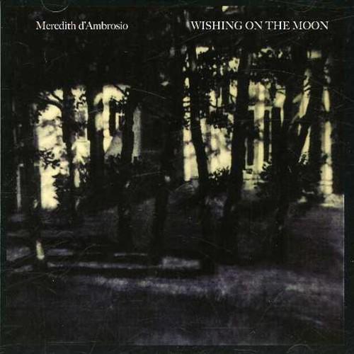 Meredith Dambrosio - Wishing on the Moon