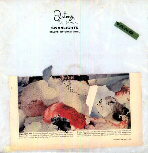 Swanlights [Import]