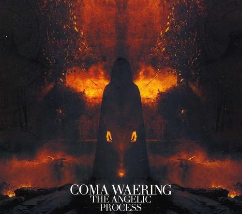 Coma Waering [Import]