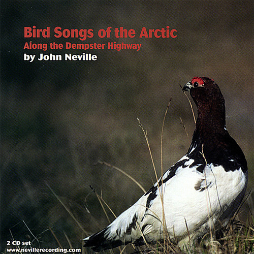 Bird Songs of the Arctic-Along the Dempster Highwa