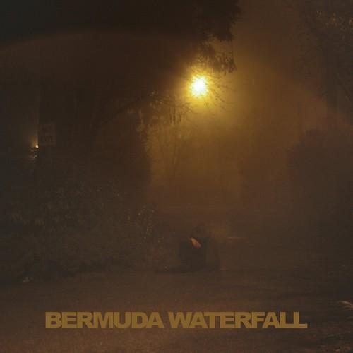 Sean Savage Nicholas - Bermuda Waterfall