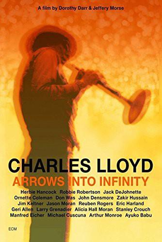 Arrows Into Infinity