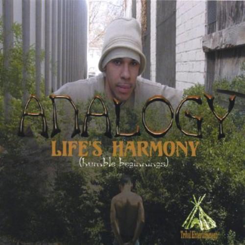 Lifes Harmonyhumble Beginnings