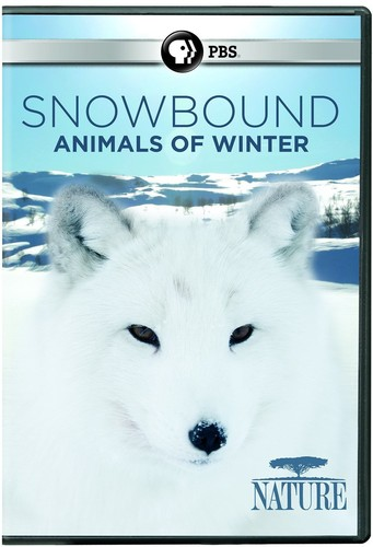 NATURE: Snowbound: Animals of Winter