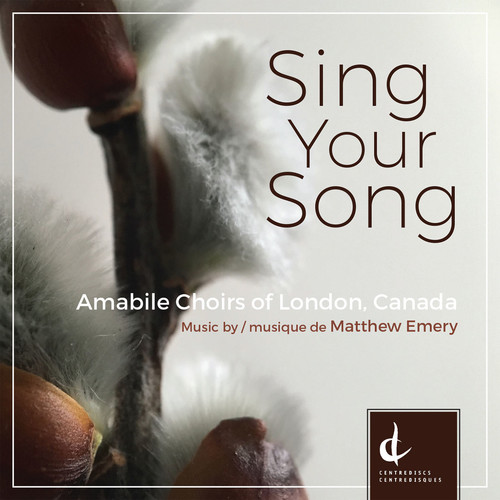 Sing Your Song [1 CD + 1 Bluray Audio]