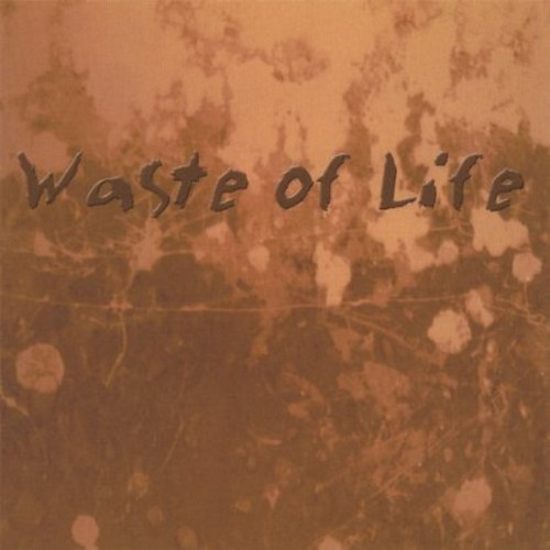 Waste of Life