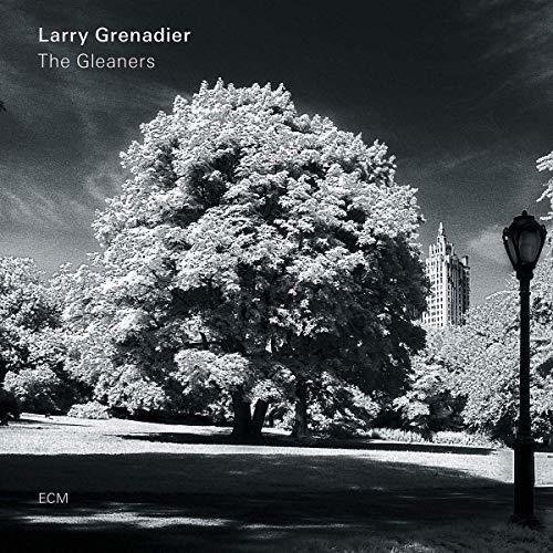 Larry Grenadier - Gleaners