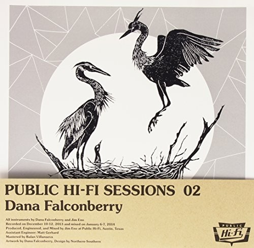 Dana Falconberry - Public Hi-Fi Sessions 02