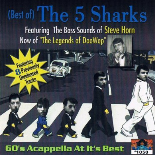 Best of the 5 Sharks