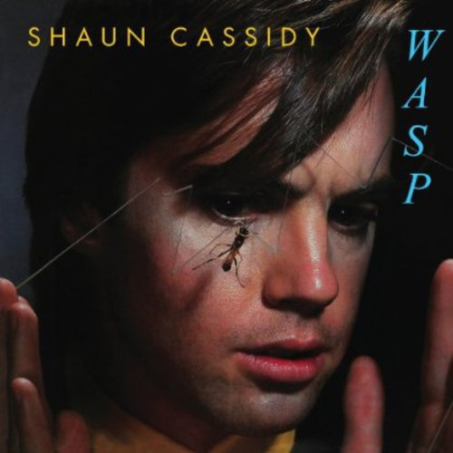 Shaun Cassidy - Wasp [Import]
