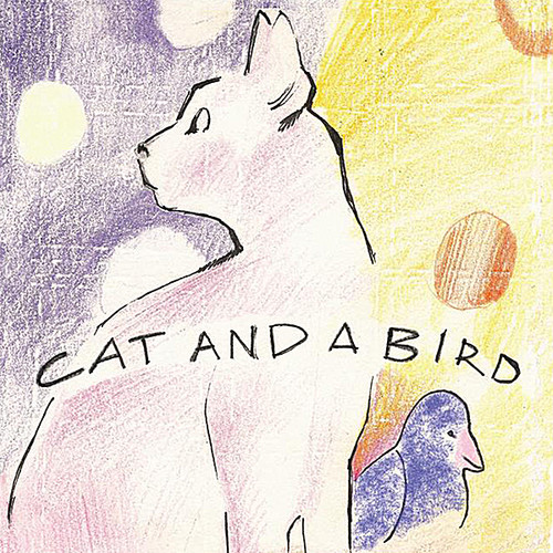 Cat and a Bird