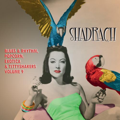 Shadrach: Blues & Rhythm Popcorn Exotica 9 /  Var