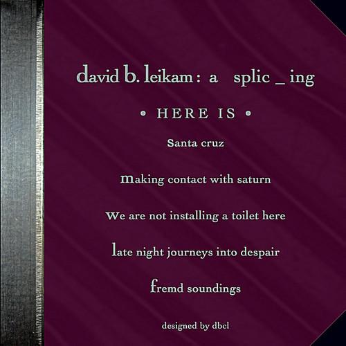 David B. Leikam : A Splic _ Ing