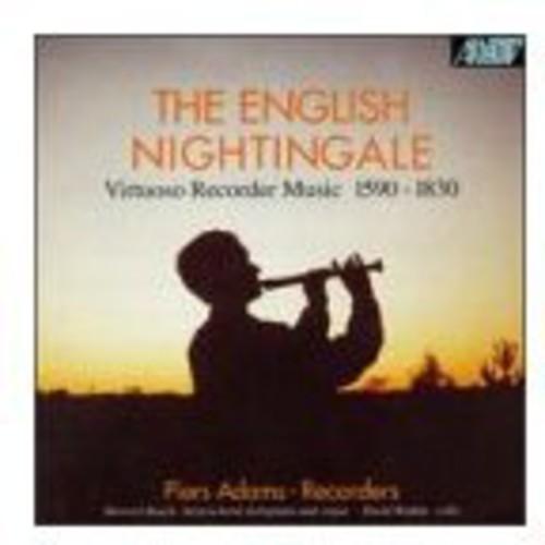 English Nightingale
