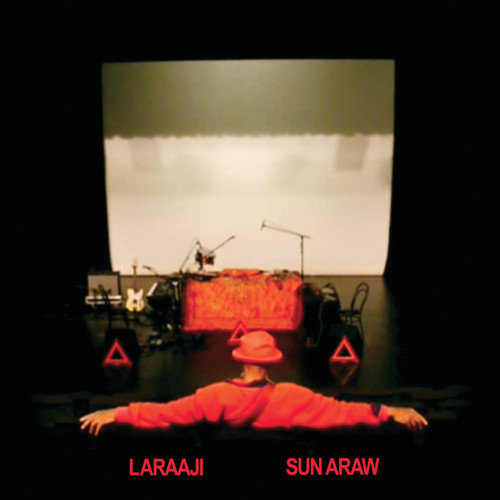 Laraaji - Professional Sunflow