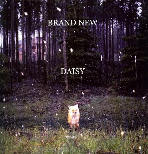 Brand New - Daisy (Dli) (Ogv)