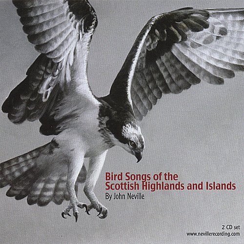Bird Songs of the Scottish Highlands & Islands