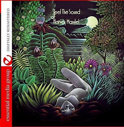 Harvey Mandel - Feel The Sound Of Harvey Mandel