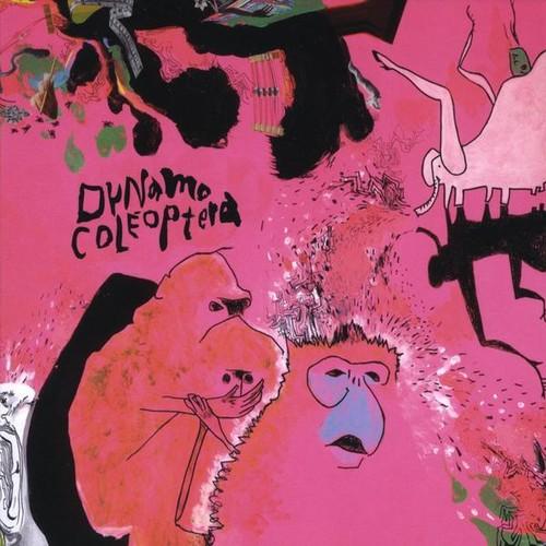 Dynamo Colaoptera