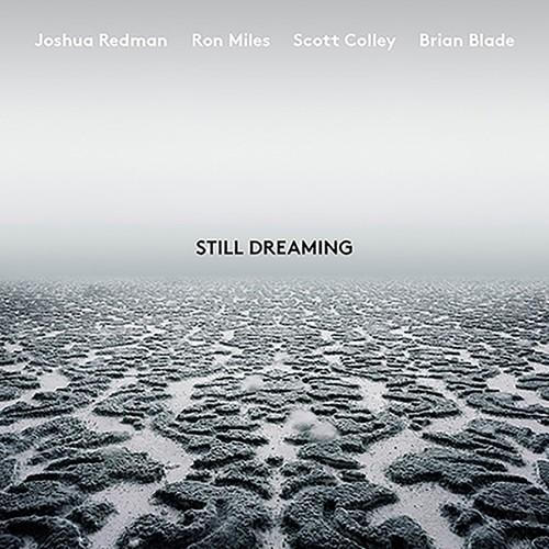 Joshua Redman - Still Dreaming [LP]