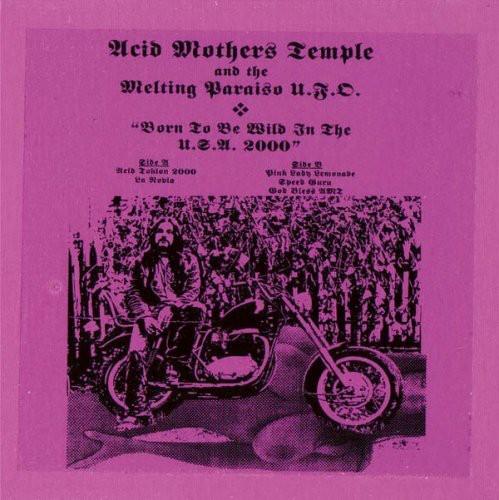 Born to Be Wild in the USA 2000