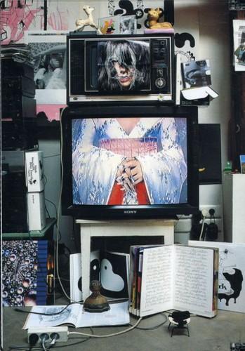 Inside Bjork Documentary [Import]
