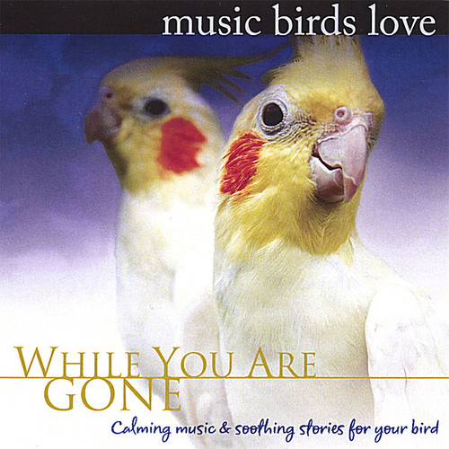 Music Birds Love: While You Are Gone