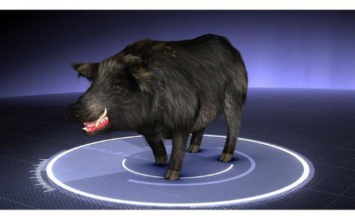 Monsterquest: Mega Hog