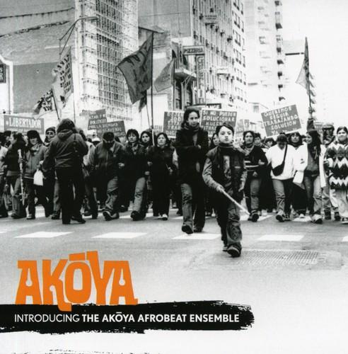 Introducing the Akoya Afrobeat