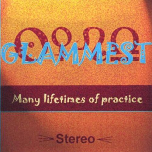 Many Lifetimes of Practice