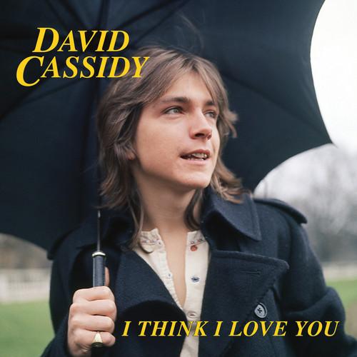 David Cassidy - I Think I Love You (Blue) [Limited Edition] (Pnk)