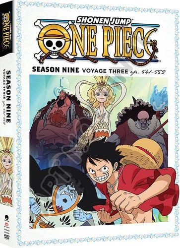 One Piece: Season Nine, Voyage Three