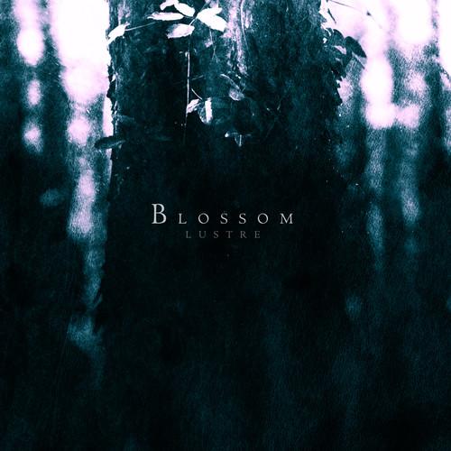 Lustre - Blossom