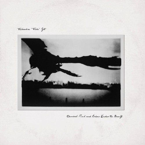 Classical Punk & Echoes Under Beauty [Import]