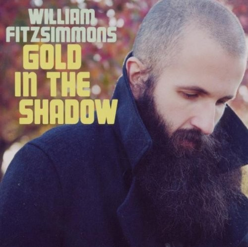 William Fitzsimmons - Gold In The Shadow [Import]